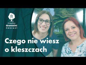 Read more about the article Między Drzewami #71 Czego nie wiesz o kleszczach [dr inż. Anna Wierzbicka] | PODCAST
