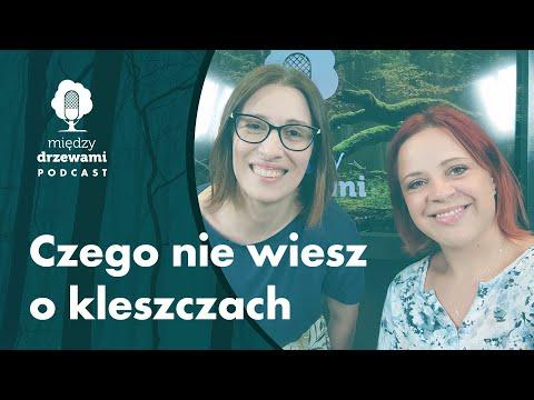 Między Drzewami #71 Czego nie wiesz o kleszczach [dr inż. Anna Wierzbicka] | PODCAST