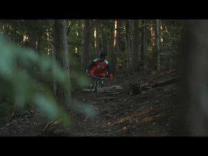 Read more about the article PKL Bike Park Góra Żar