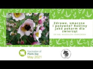 Read more about the article Zdrowe, smaczne i pożywne? Rośliny jako pokarm dla zwierząt – dr hab. Magdalena Markowska