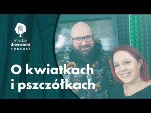 Read more about the article Między Drzewami #66 O kwiatkach i pszczółkach [Maciej Chromy]   PODCAST