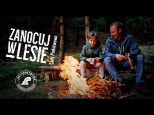 """Read more about the article """"Zanocuj w lesie"""" – nowa propozycja dla fanów bushcraftu"""