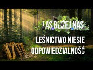 Read more about the article Las bliżej nas – Leśnictwo niesie odpowiedzialność