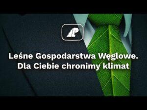 Read more about the article Leśne Gospodarstwa Węglowe – Dla Ciebie chronimy klimat