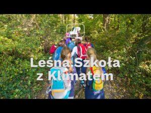Read more about the article Leśna szkoła z klimatem