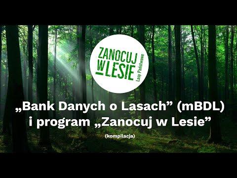 Bank Danych o Lasach (mBDL) i program Zanocuj w Lesie. Jak korzystać?