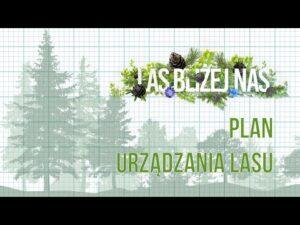 Read more about the article Las bliżej nas | NOWY SEZON | Plan Urządzania Lasu | odc. 3