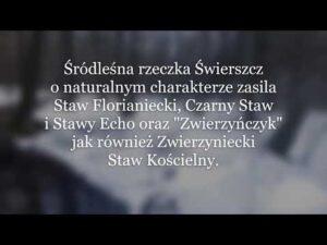 """Read more about the article Edu opowieść """"Woda movie"""" – Światowy Dzień Wody"""