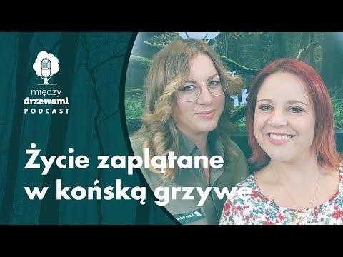 Read more about the article Między Drzewami #74 Życie zaplątane w końską grzywę [Paulina Adamska] | PODCAST