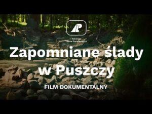 Read more about the article Zapomniane ślady w Puszczy |FILM DOKUMENTALNY|
