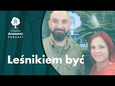 Read more about the article Między Drzewami #78 Leśnikiem być. O zawodzie leśnika [Michał Wojcieszkiewicz] | PODCAST