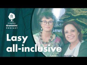 Read more about the article Między Drzewami #77 Lasy all-inclusive. O estetyce krajobrazu leśnego [dr A. Cieszewska] | PODCAST