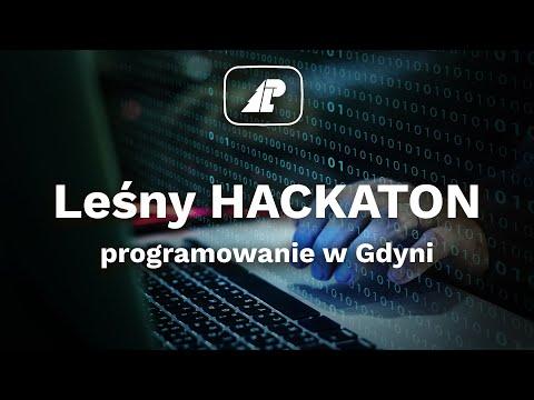 Read more about the article Leśny HACKATHON