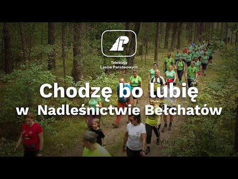 Read more about the article Chodzę bo lubię – kolejna edycja (Nadleśnictwo Bełchatów, 12.09.2021)