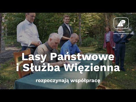 Read more about the article Lasy Państwowe i służba więzienna rozpoczynają współpracę