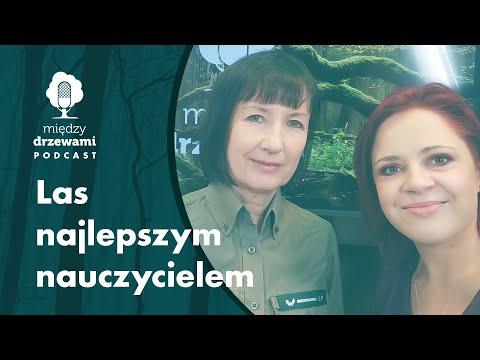 Read more about the article Między Drzewami #81 Las najlepszym nauczycielem [Ilona Mrowińska] | PODCAST