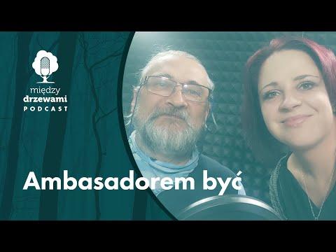 Read more about the article Między Drzewami #85 Ambasadorem być. O kampanii Dla Lasu Dla Ludzi [dr Andrzej Kruszewicz] | PODCAST