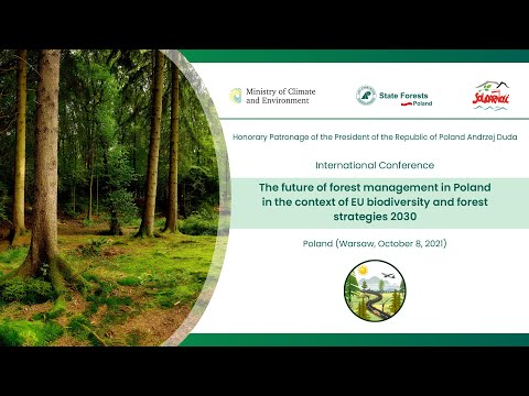 Read more about the article The future of forest management in Poland in the context of EU strategies for 2030