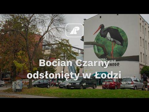 Read more about the article Uroczyste odsłonięcie muralu z bocianem czarnym w Łodzi