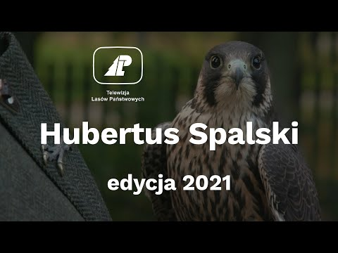 Read more about the article Hubertus Spalski 2021